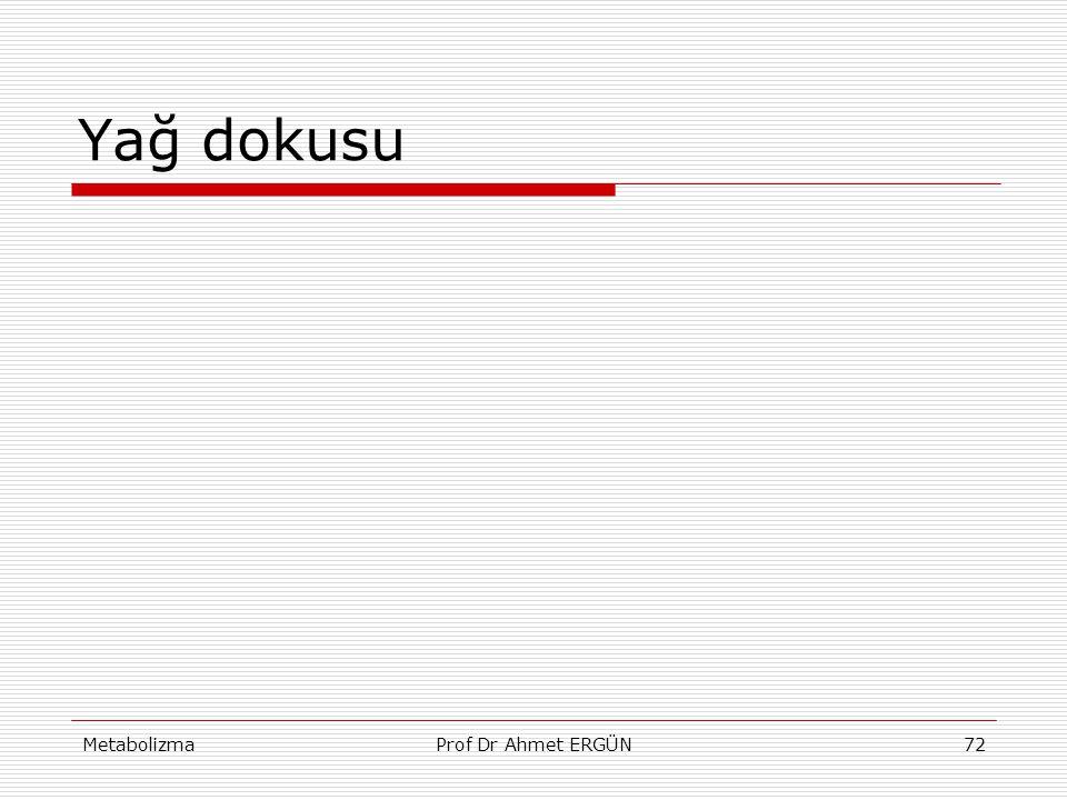 MetabolizmaProf Dr Ahmet ERGÜN72 Yağ dokusu