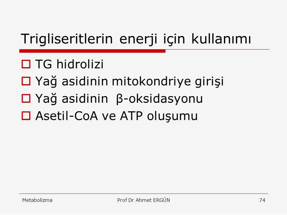 MetabolizmaProf Dr Ahmet ERGÜN74 Trigliseritlerin enerji için kullanımı  TG hidrolizi  Yağ asidinin mitokondriye girişi  Yağ asidinin β-oksidasyonu