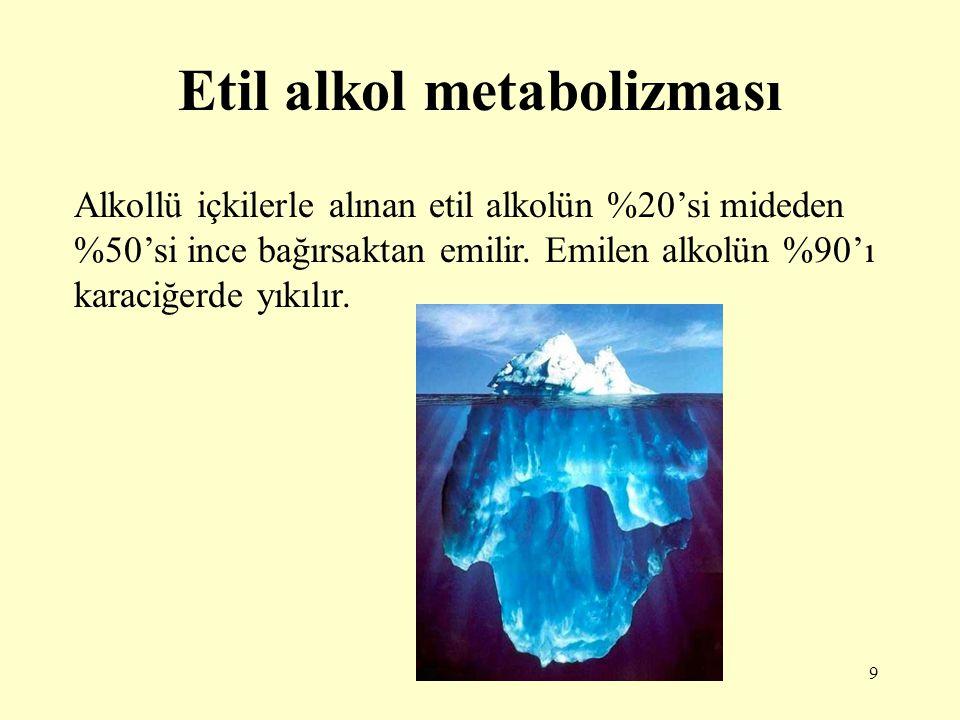 9 Etil alkol metabolizması Alkollü içkilerle alınan etil alkolün %20'si mideden %50'si ince bağırsaktan emilir. Emilen alkolün %90'ı karaciğerde yıkıl