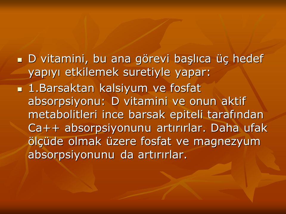 D vitamini, bu ana görevi başlıca üç hedef yapıyı etkilemek suretiyle yapar: D vitamini, bu ana görevi başlıca üç hedef yapıyı etkilemek suretiyle yap
