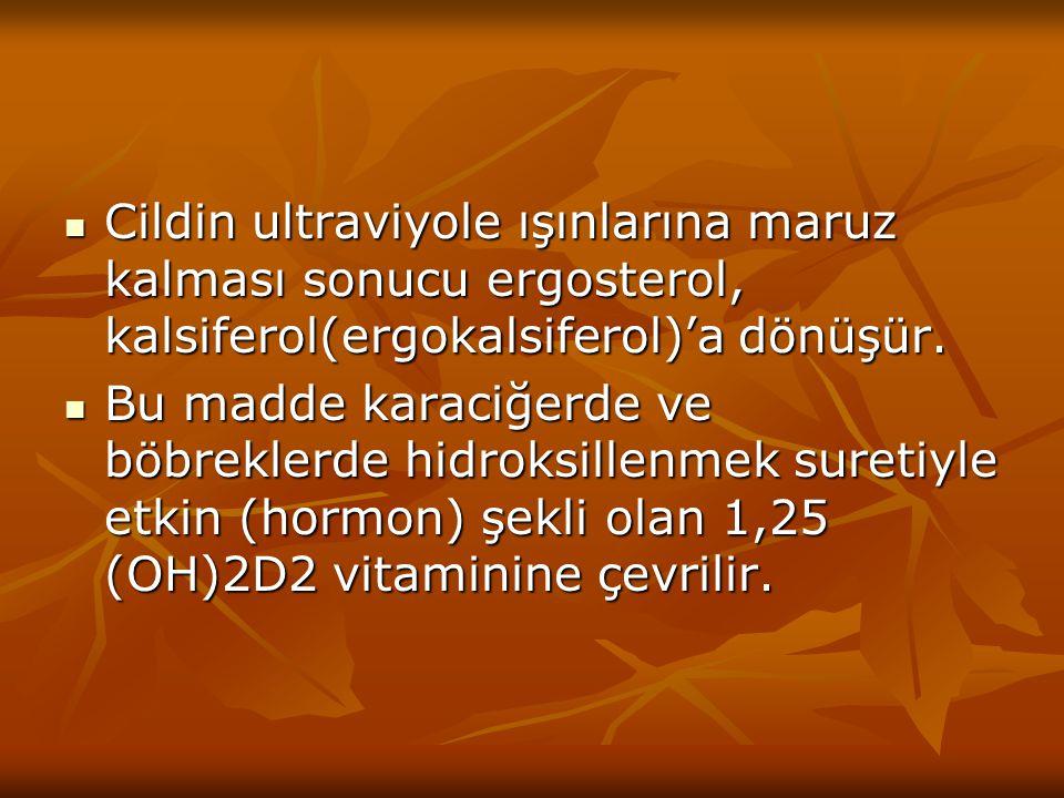 2.Kalsipotriol: 2.Kalsipotriol: D vitamininin 1α, 3β, 24-trihidroksi türevidir.Kemikten kalsiyum mobilizasyonu üzerindeki etkinliği kalsitriolunkine göre 100 kez daha düşüktür.