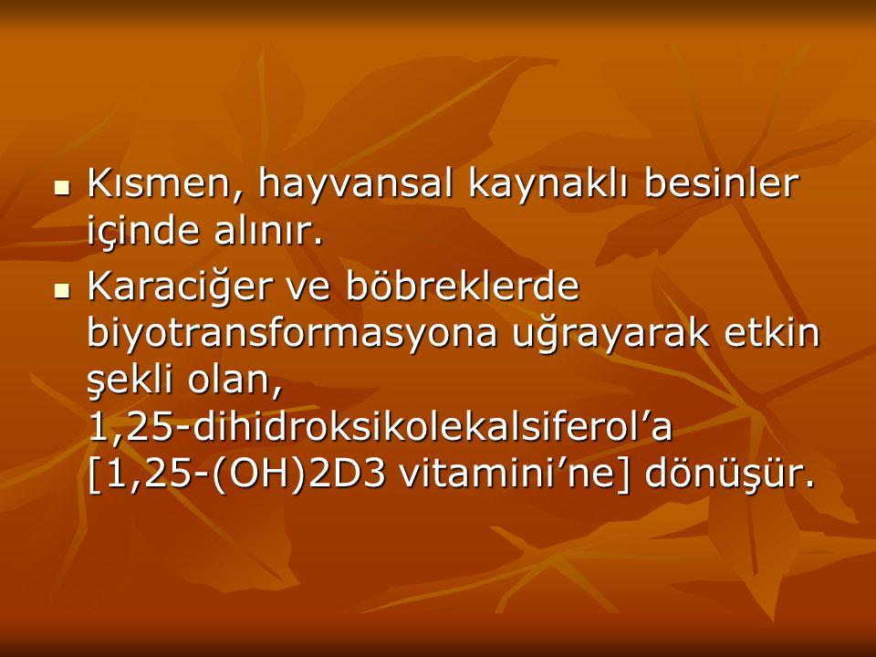 Absorpsiyon: Absorpsiyon: D2 ve D3 vitaminleri ince barsaktan absorbe edilirler.