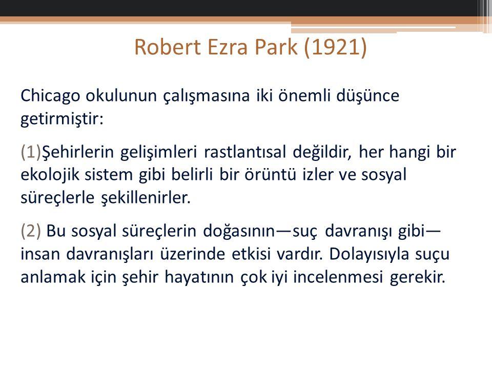 Robert Ezra Park (1921) Chicago okulunun çalışmasına iki önemli düşünce getirmiştir: (1)Şehirlerin gelişimleri rastlantısal değildir, her hangi bir ekolojik sistem gibi belirli bir örüntü izler ve sosyal süreçlerle şekillenirler.