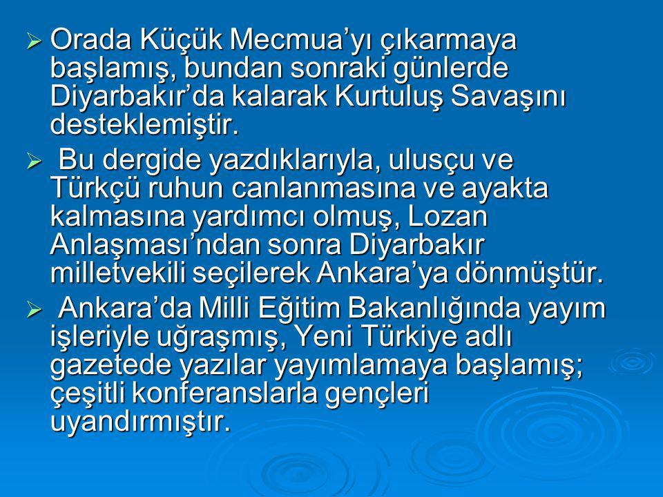  Orada Küçük Mecmua'yı çıkarmaya başlamış, bundan sonraki günlerde Diyarbakır'da kalarak Kurtuluş Savaşını desteklemiştir.  Bu dergide yazdıklarıyla