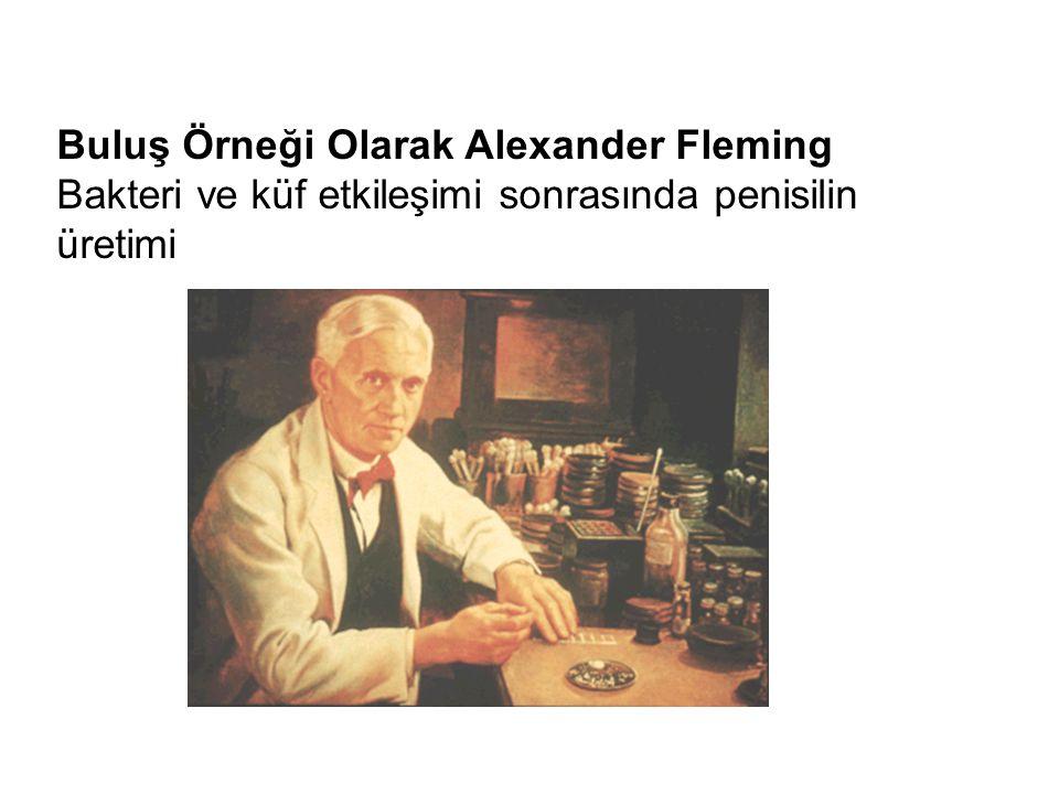 Buluş Örneği Olarak Alexander Fleming Bakteri ve küf etkileşimi sonrasında penisilin üretimi