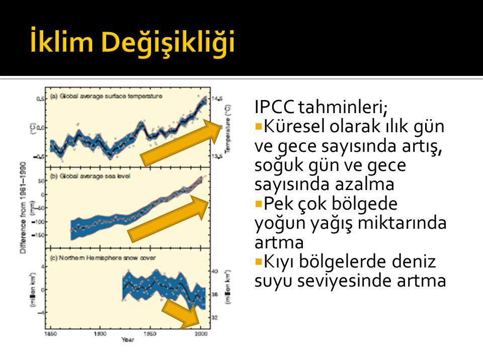 IPCC tahminleri;  Küresel olarak ılık gün ve gece sayısında artış, soğuk gün ve gece sayısında azalma  Pek çok bölgede yoğun yağış miktarında artma