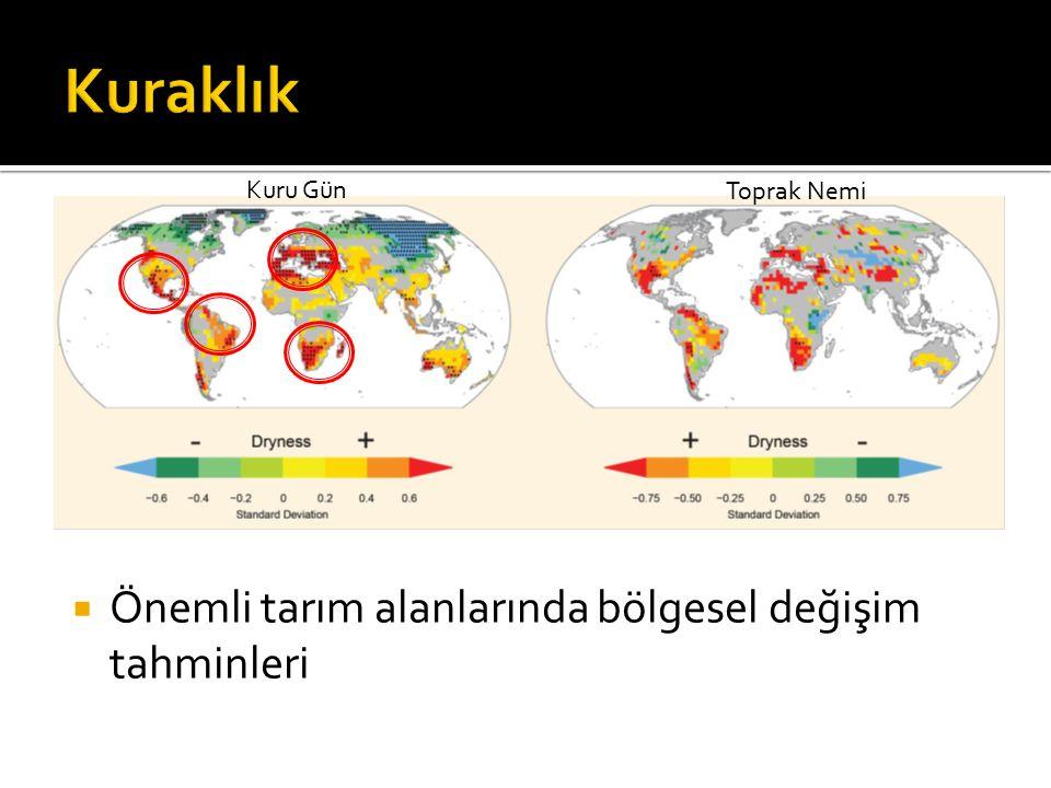  Önemli tarım alanlarında bölgesel değişim tahminleri Kuru Gün Toprak Nemi