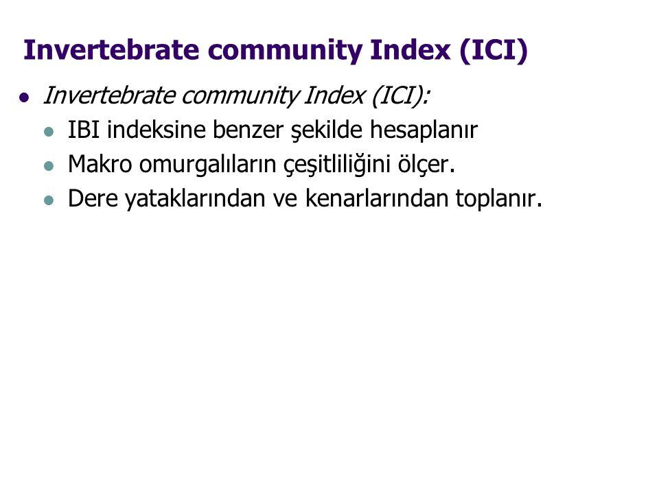 Invertebrate community Index (ICI) Invertebrate community Index (ICI): IBI indeksine benzer şekilde hesaplanır Makro omurgalıların çeşitliliğini ölçer.