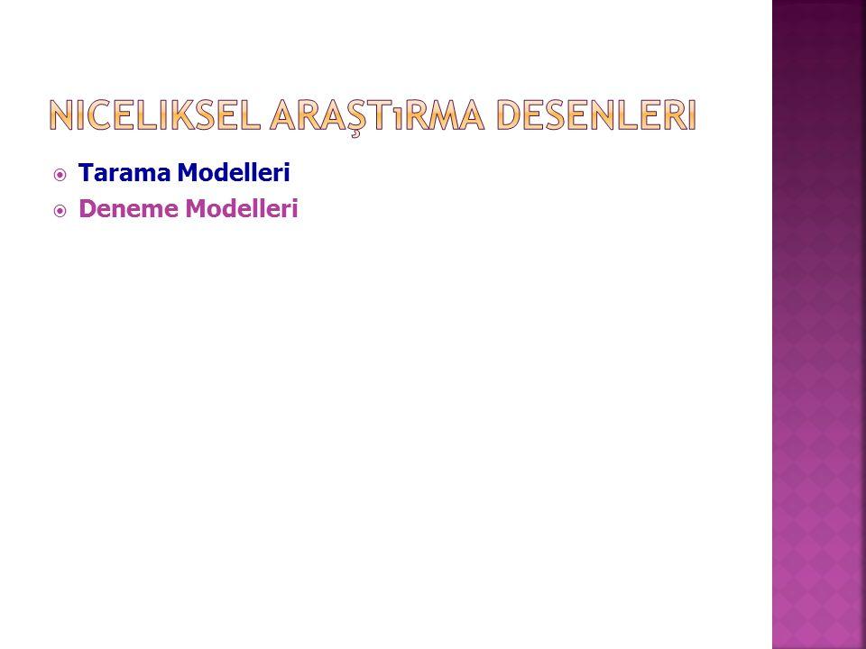  Tarama Modelleri  Deneme Modelleri