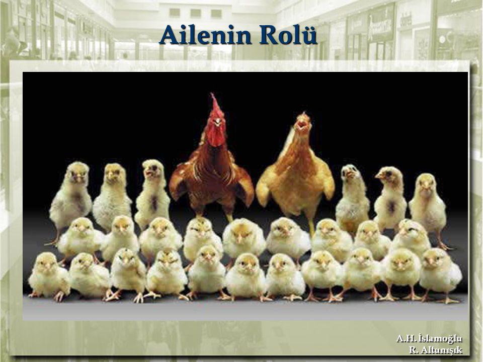 A.H. İslamoğlu R. Altunışık Ailenin Rolü