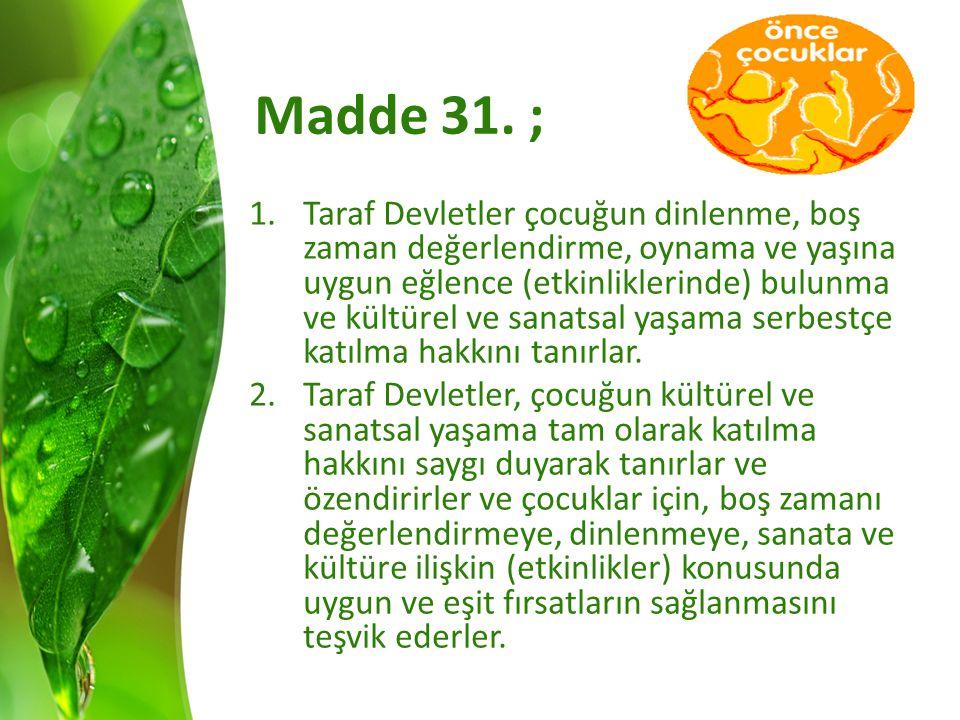 Madde 31.