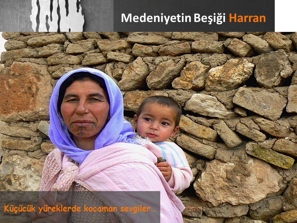 Sonuca Dair Bilgiler Harran Toplum Merkezinde dezavantajlı durumda olan kadınlara yönelik kurslar verilmektedir.