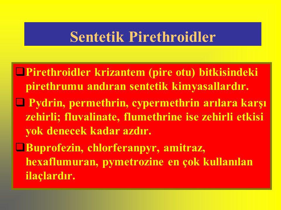 Sentetik Pirethroidler  Pirethroidler krizantem (pire otu) bitkisindeki pirethrumu andıran sentetik kimyasallardır.