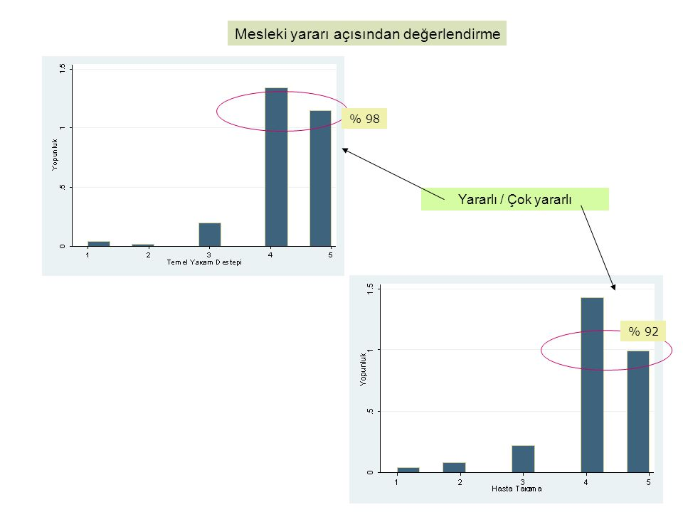 Mesleki yararı açısından değerlendirme Yararlı / Çok yararlı % 98 % 92