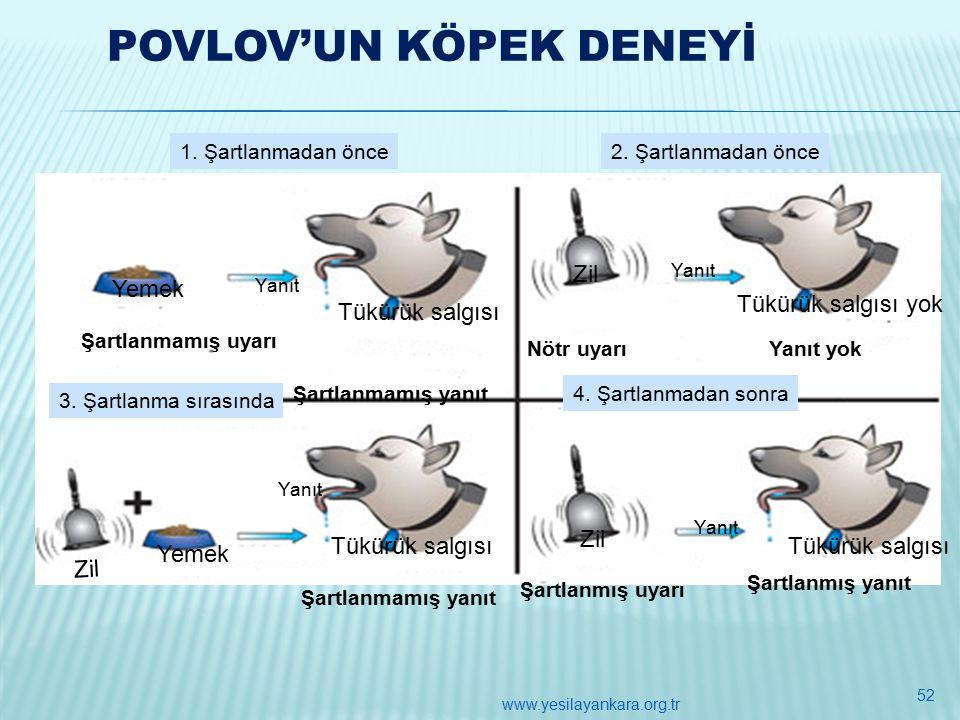 POVLOV'UN KÖPEK DENEYİ 1. Şartlanmadan önce2. Şartlanmadan önce 4.