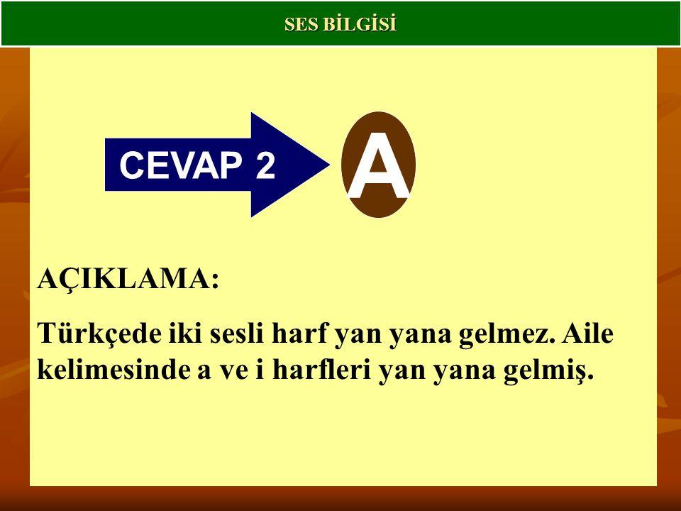 CEVAP 2 A AÇIKLAMA: Türkçede iki sesli harf yan yana gelmez.