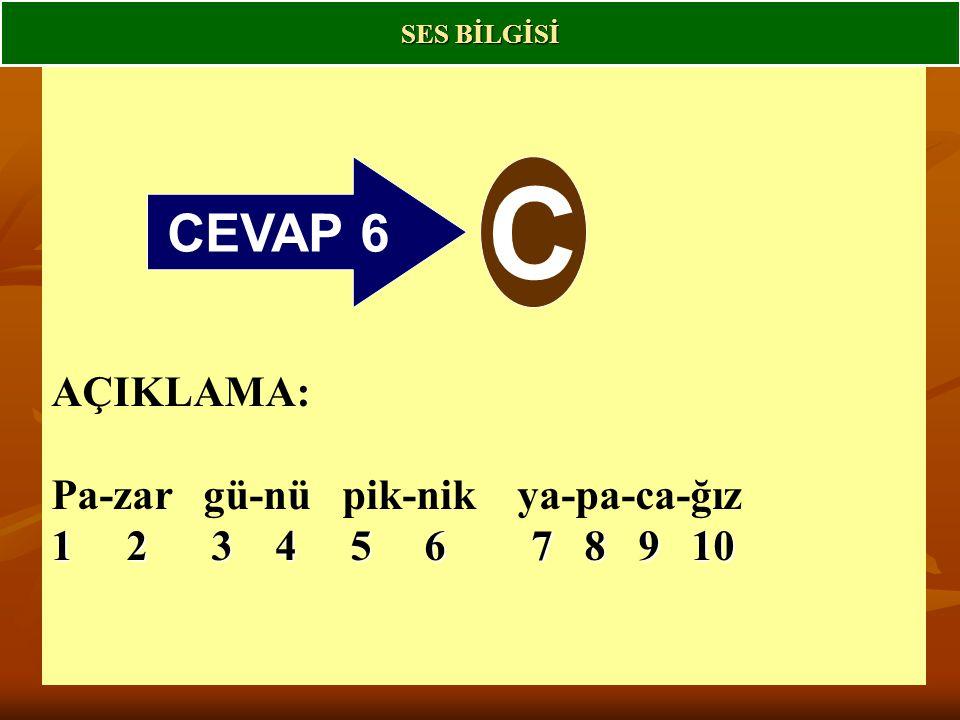 CEVAP 6 C AÇIKLAMA: Pa-zar gü-nü pik-nik ya-pa-ca-ğız 1 2 3 4 5 6 7 8 9 10 SES BİLGİSİ