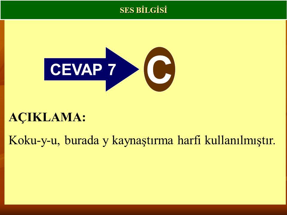 CEVAP 7 C AÇIKLAMA: Koku-y-u, burada y kaynaştırma harfi kullanılmıştır. SES BİLGİSİ