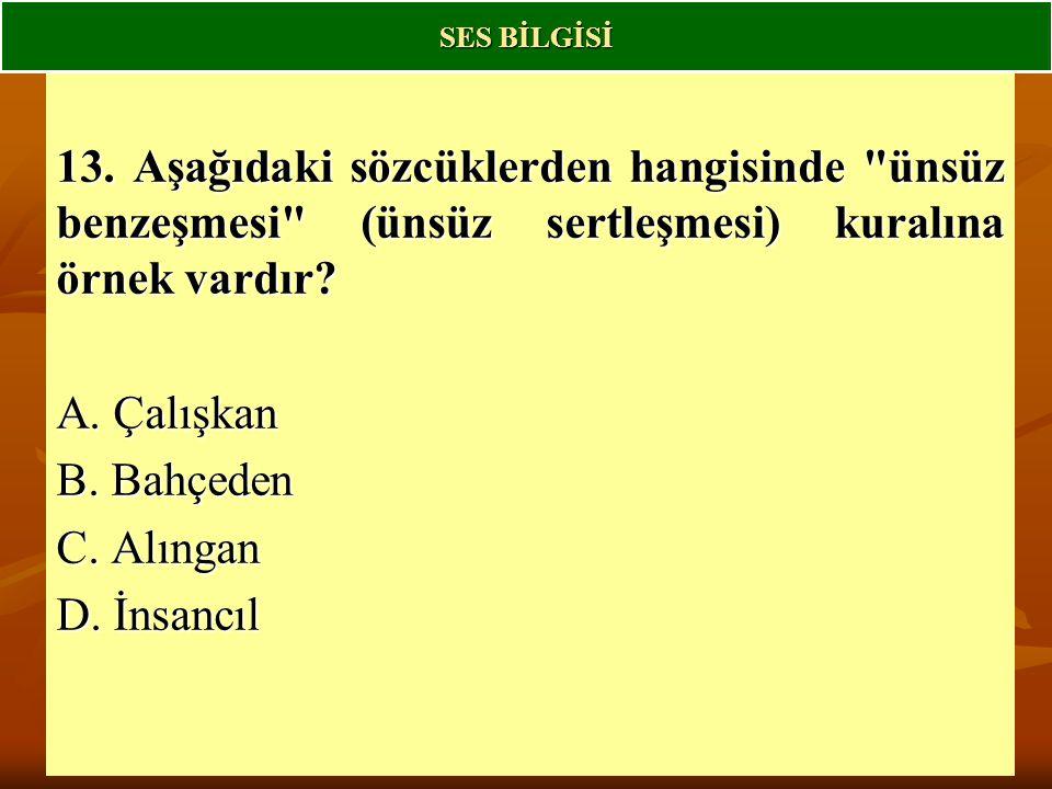 13.Aşağıdaki sözcüklerden hangisinde ünsüz benzeşmesi (ünsüz sertleşmesi) kuralına örnek vardır.