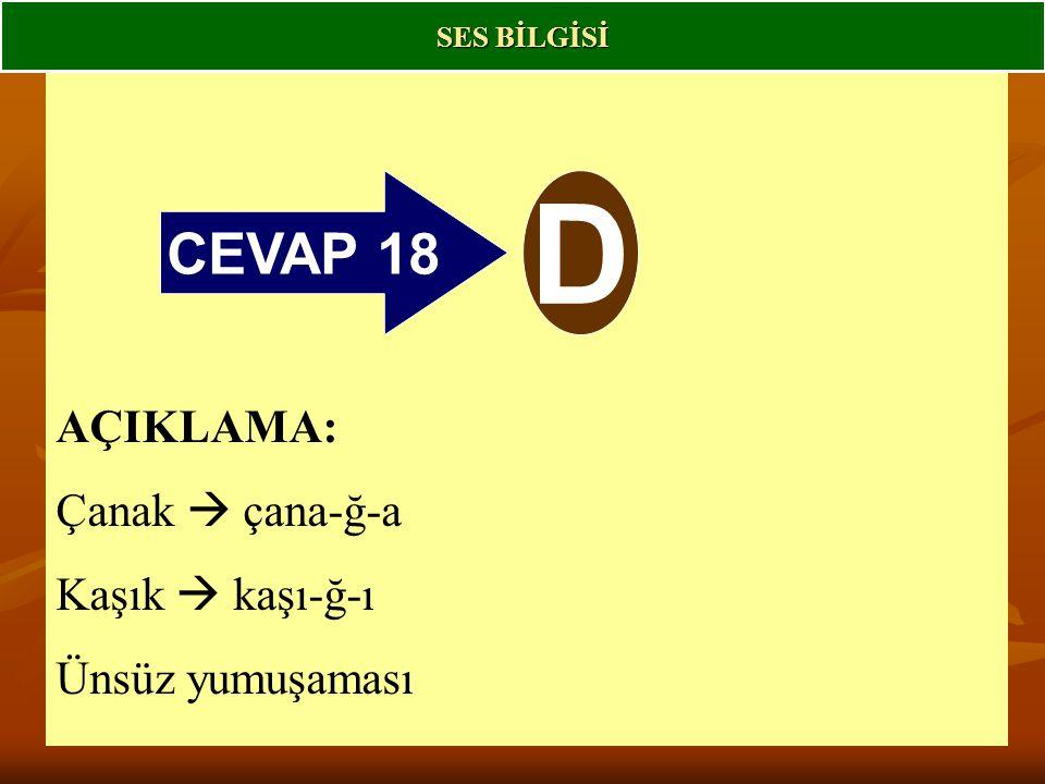 CEVAP 18 D AÇIKLAMA: Çanak  çana-ğ-a Kaşık  kaşı-ğ-ı Ünsüz yumuşaması SES BİLGİSİ