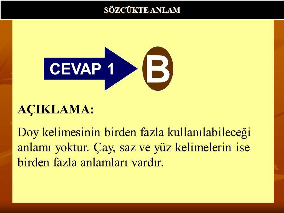CEVAP 1 B AÇIKLAMA: Doy kelimesinin birden fazla kullanılabileceği anlamı yoktur.