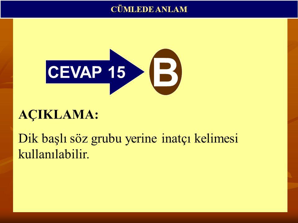 CEVAP 15 B CÜMLEDE ANLAM AÇIKLAMA: Dik başlı söz grubu yerine inatçı kelimesi kullanılabilir.