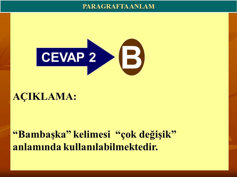 CEVAP 2 B AÇIKLAMA: Bambaşka kelimesi çok değişik anlamında kullanılabilmektedir.