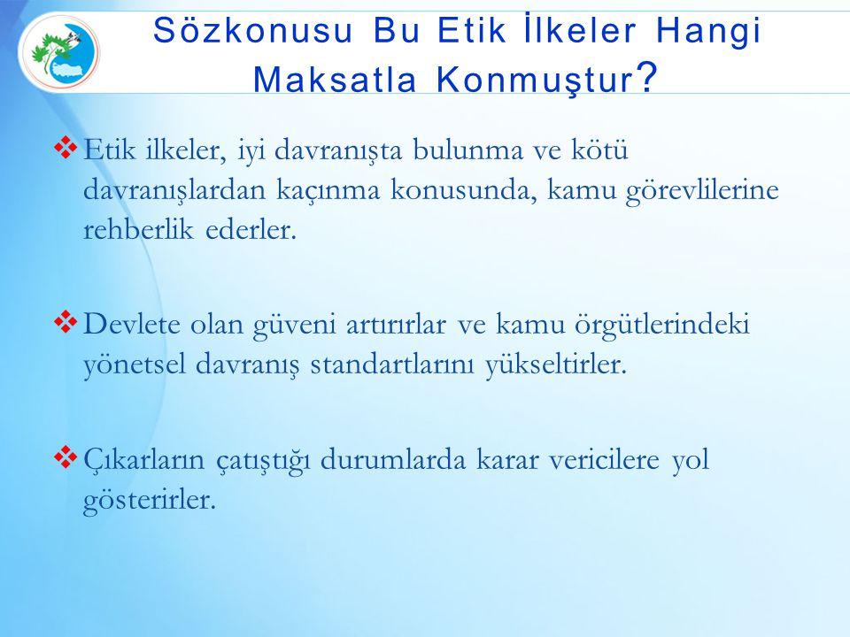  Etik ilkeler, iyi davranışta bulunma ve kötü davranışlardan kaçınma konusunda, kamu görevlilerine rehberlik ederler.