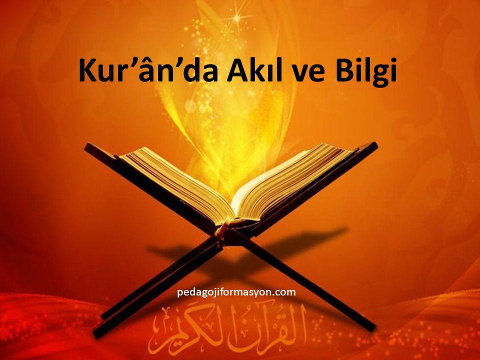 Kur'ân'da Akıl ve Bilgi pedagojiformasyon.com