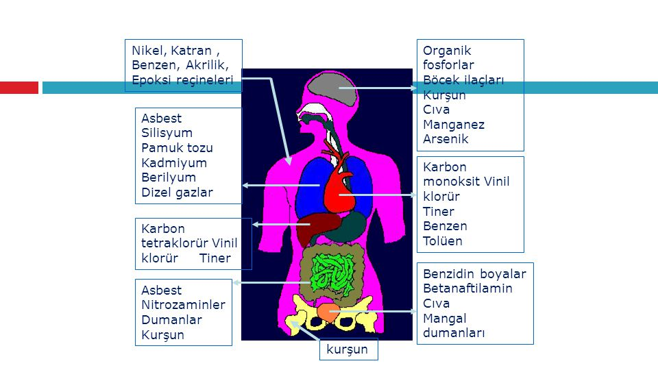 Organik fosforlar Böcek ilaçları Kurşun Cıva Manganez Arsenik Karbon monoksit Vinil klorür Tiner Benzen Tolüen Benzidin boyalar Betanaftilamin Cıva Ma