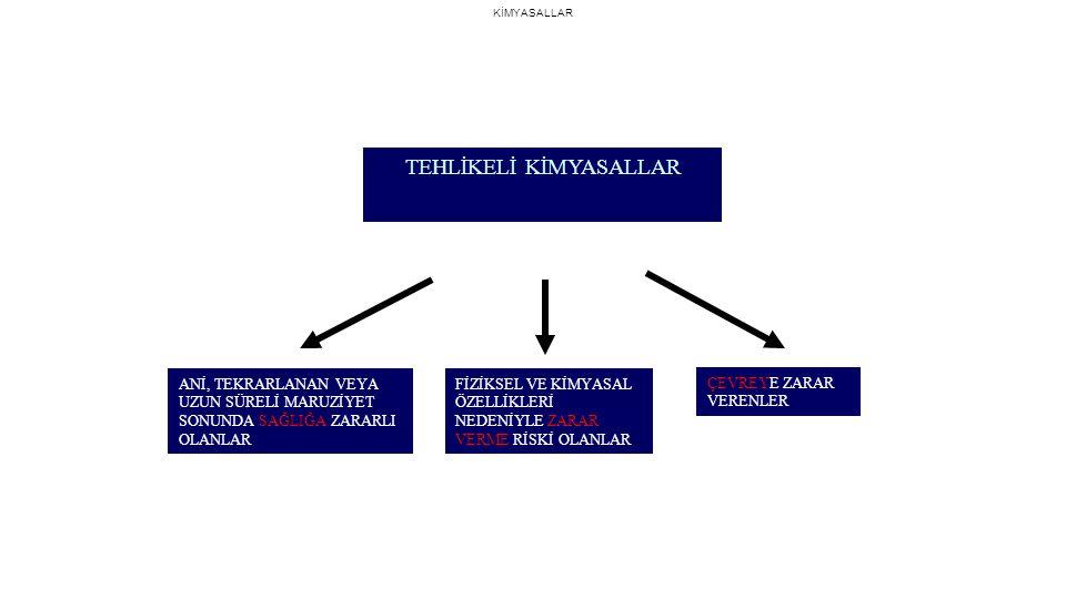 ÜLKEMİZDEKİ BAZI KİMYASAL KAZALAR Kimya Deposu Yangın ve Patlamaları İstanbul Tuzla LMA Fab.