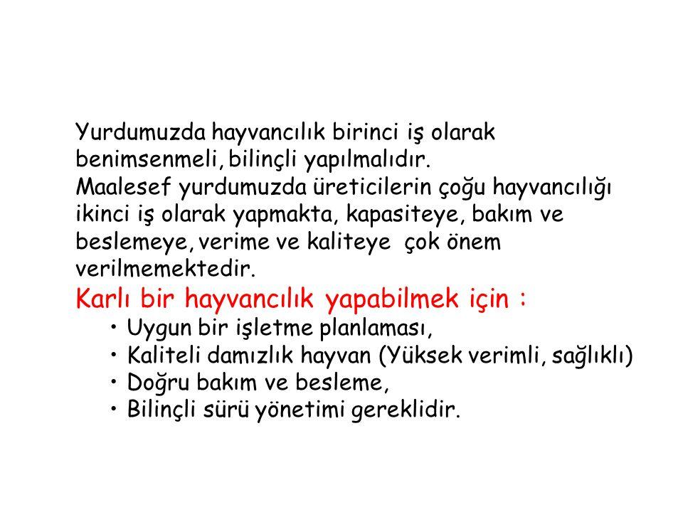İŞLETME PLANLAMASI 1.