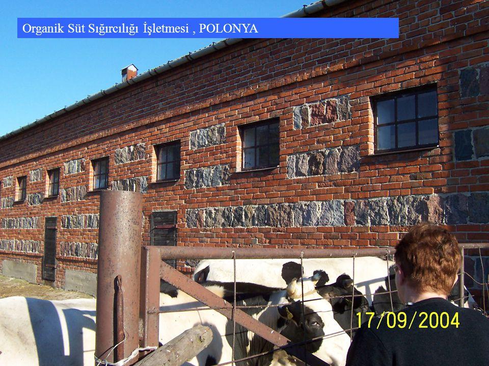 Organik Süt Sığırcılığı İşletmesi, POLONYA