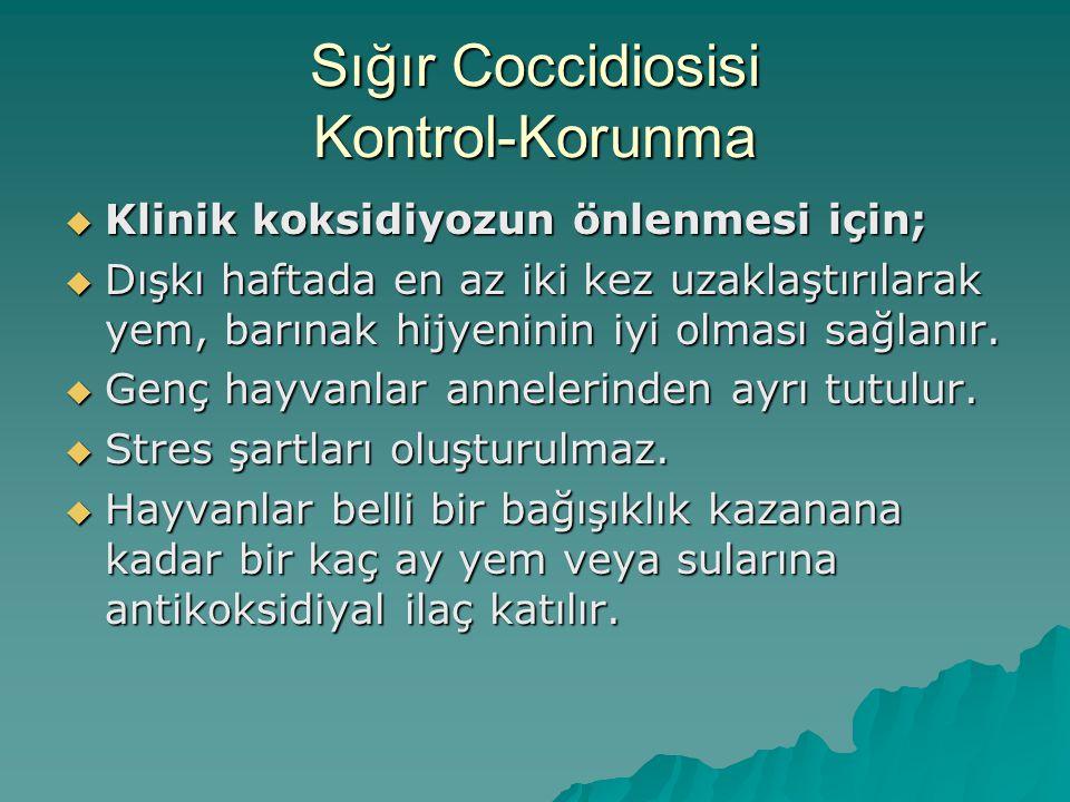 Sığır Coccidiosisi Kontrol-Korunma  Klinik koksidiyozun önlenmesi için;  Dışkı haftada en az iki kez uzaklaştırılarak yem, barınak hijyeninin iyi olması sağlanır.