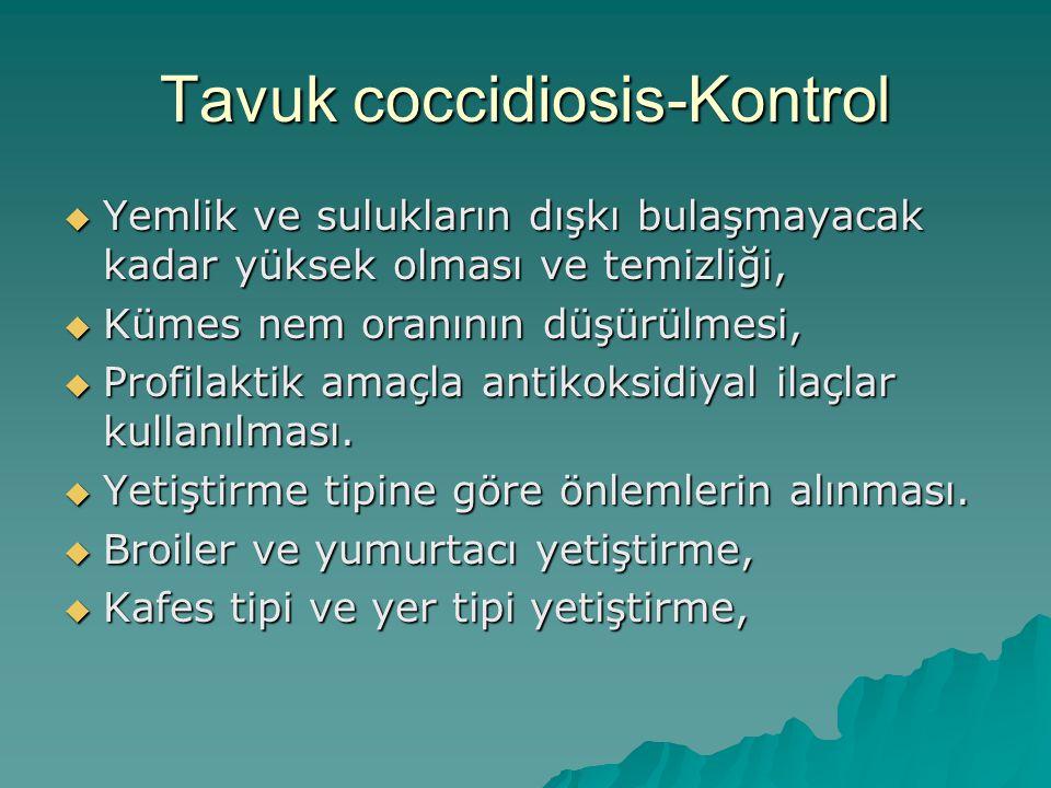 Tavuk coccidiosis-Kontrol  Yemlik ve sulukların dışkı bulaşmayacak kadar yüksek olması ve temizliği,  Kümes nem oranının düşürülmesi,  Profilaktik amaçla antikoksidiyal ilaçlar kullanılması.