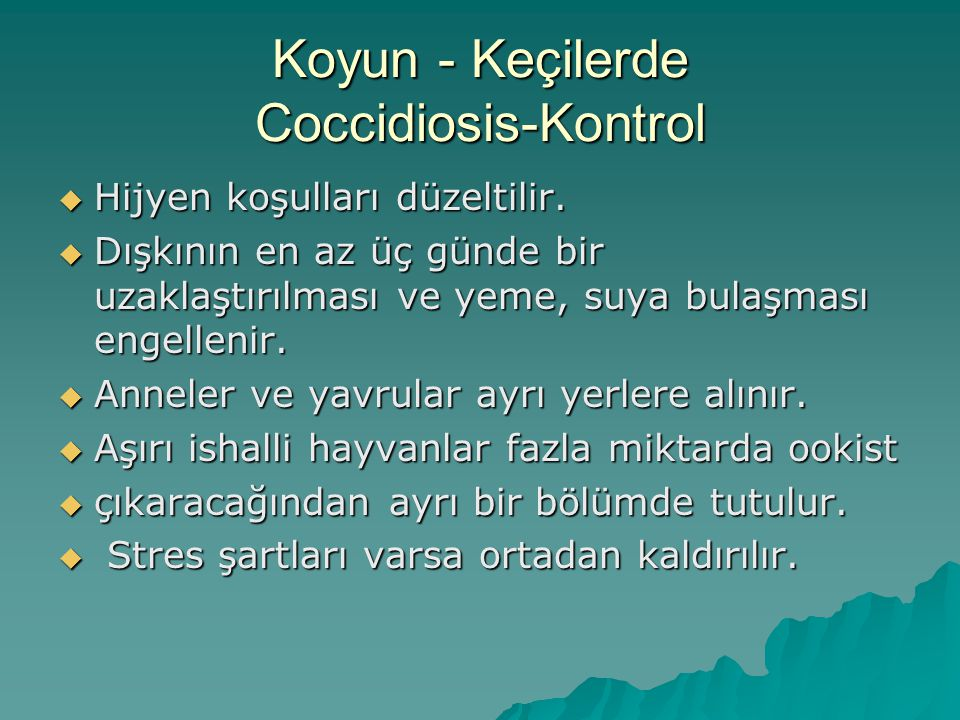 Koyun – Keçi-Coccidiosis Klinik Enfeksiyonlardan Korunma  Dışkı haftada en az iki kez uzaklaştırılarak yem,su, barınak hijyeninin iyi olması sağlanır.