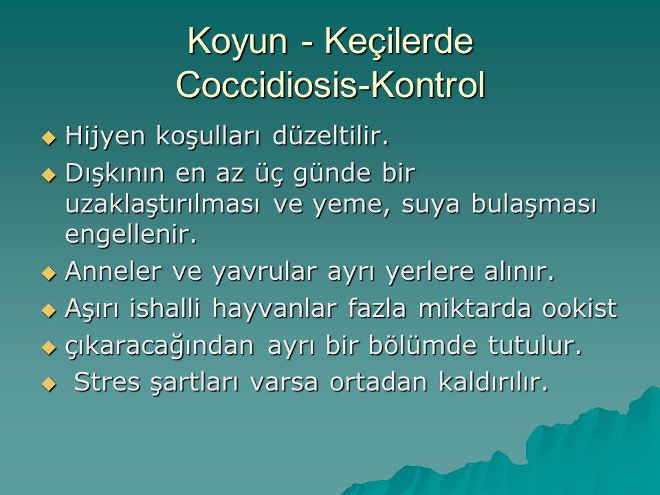 Sığır Coccidiosisi Tedavi  Amprolium: (10-20mg/kg/p.o/günlük, 5 gün),  Sulfadimidin-Na: (50-100mg/kg/p.o/günlük, iyileşene kadar),  Formosulfathiazol: (100-200mg/kg/p.o/günlük, 3-4 gün),  Sulfadiazin + Trimethoprim: (25+5 mg/kg/p.o/günlük, iyileşene kadar),  Sulfadimethoxin + Trimethoprim: (16.6+3.3 mg/kg/p.o/günlük, klinik düzelme),  Toltrazuril : (10-20 mg/kg/p.o/günlük, 2 gün)  Sulfanamidler (Sulfadimidin-Na): 66 mg/kg.