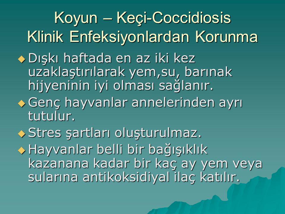 Koyun - Keçilerde Coccidiosis-Tedavi  Sulfamethazin (6o mg/kg/ p.o/günlük, 5 gün),  Sulfadiazin + Trimethoprim (25+5 mg/kg/ p.o/günde 2 defa, 5 gün),  Amprolium* + Ethopabat (62.5+3.2 mg/kg/p.o/günlük, 14 gün),  Toltrazuril* (20 mg/kg/p.o/günlük, 3-5 gün)  * Sütçü keçilerde kullanılmaz.
