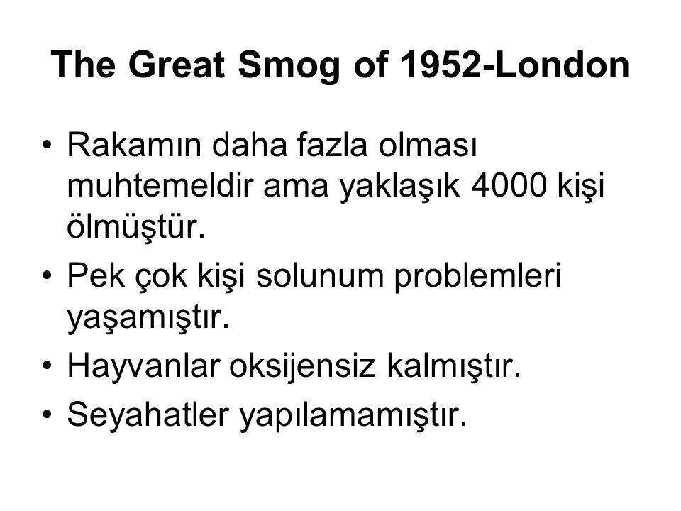 The Great Smog of 1952-London Rakamın daha fazla olması muhtemeldir ama yaklaşık 4000 kişi ölmüştür. Pek çok kişi solunum problemleri yaşamıştır. Hayv