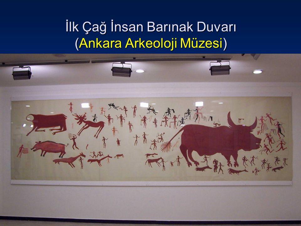 İlk Çağ İnsan Barınak Duvarı (Ankara Arkeoloji Müzesi)
