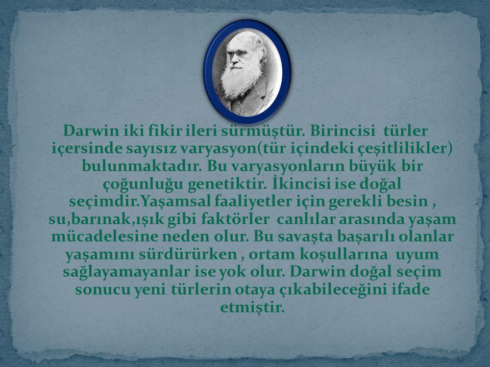 Darwin iki fikir ileri sürmüştür. Birincisi türler içersinde sayısız varyasyon(tür içindeki çeşitlilikler) bulunmaktadır. Bu varyasyonların büyük bir