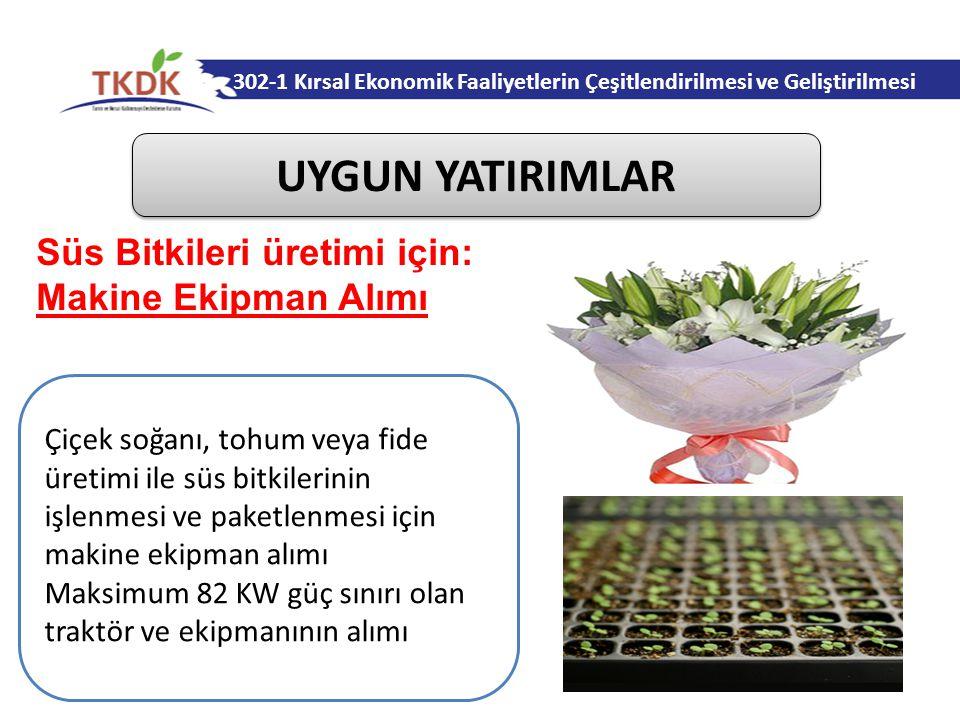 302-1 Kırsal Ekonomik Faaliyetlerin Çeşitlendirilmesi ve Geliştirilmesi UYGUN YATIRIMLAR Çiçek soğanı, tohum veya fide üretimi ile süs bitkilerinin işlenmesi ve paketlenmesi için makine ekipman alımı Maksimum 82 KW güç sınırı olan traktör ve ekipmanının alımı Süs Bitkileri üretimi için: Makine Ekipman Alımı