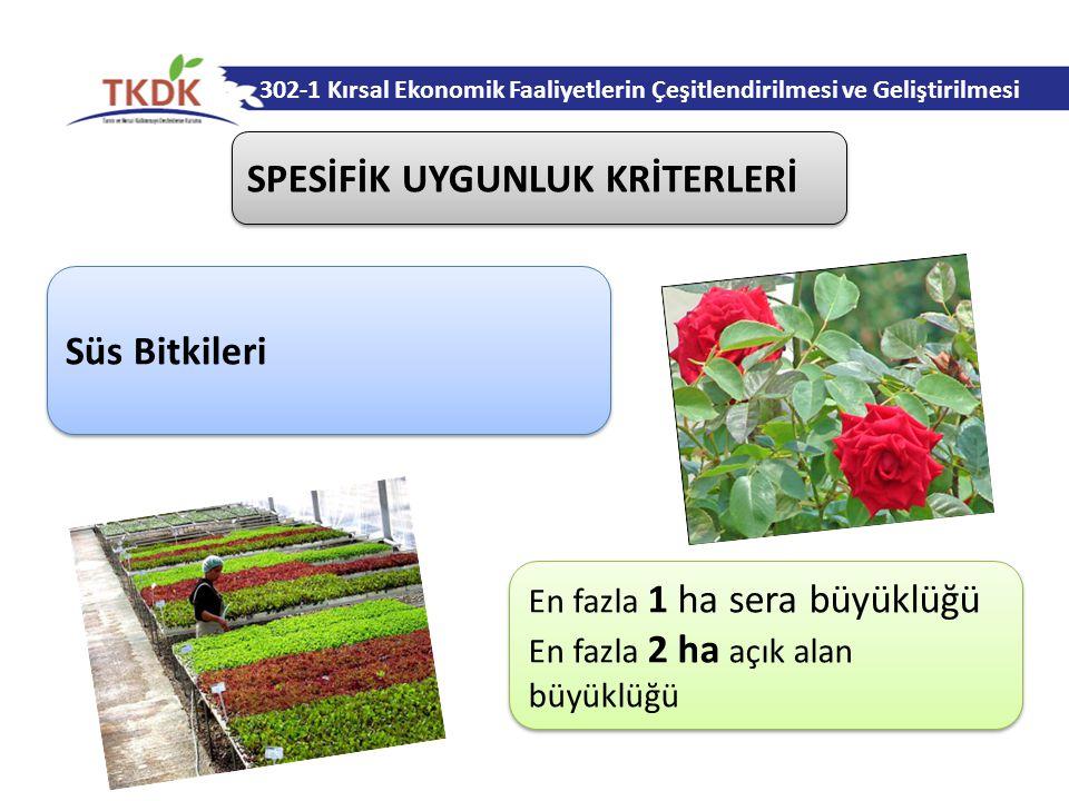 Süs Bitkileri 302-1 Kırsal Ekonomik Faaliyetlerin Çeşitlendirilmesi ve Geliştirilmesi En fazla 1 ha sera büyüklüğü En fazla 2 ha açık alan büyüklüğü En fazla 1 ha sera büyüklüğü En fazla 2 ha açık alan büyüklüğü SPESİFİK UYGUNLUK KRİTERLERİ