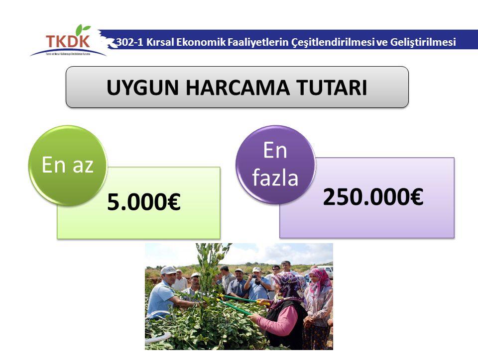 302-1 Kırsal Ekonomik Faaliyetlerin Çeşitlendirilmesi ve Geliştirilmesi 5.000€ En az 250.000€ En fazla UYGUN HARCAMA TUTARI