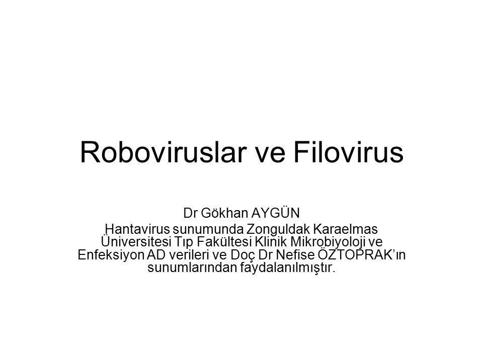 ROBOVİRUS Rodent-borne viruses ROBOVİRUS