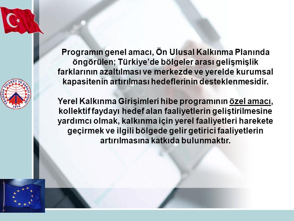 Programın genel amacı, Ön Ulusal Kalkınma Planında öngörülen; Türkiye'de bölgeler arası gelişmişlik farklarının azaltılması ve merkezde ve yerelde kur