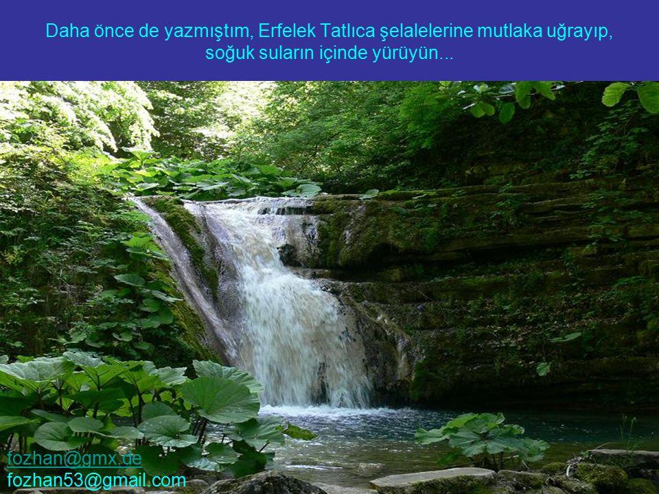Daha önce de yazmıştım, Erfelek Tatlıca şelalelerine mutlaka uğrayıp, soğuk suların içinde yürüyün... fozhan@gmx.de fozhan53@gmail.com