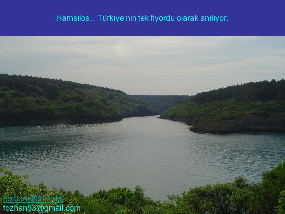 Hamsilos... Türkiye'nin tek fiyordu olarak anılıyor. fozhan@gmx.de fozhan53@gmail.com
