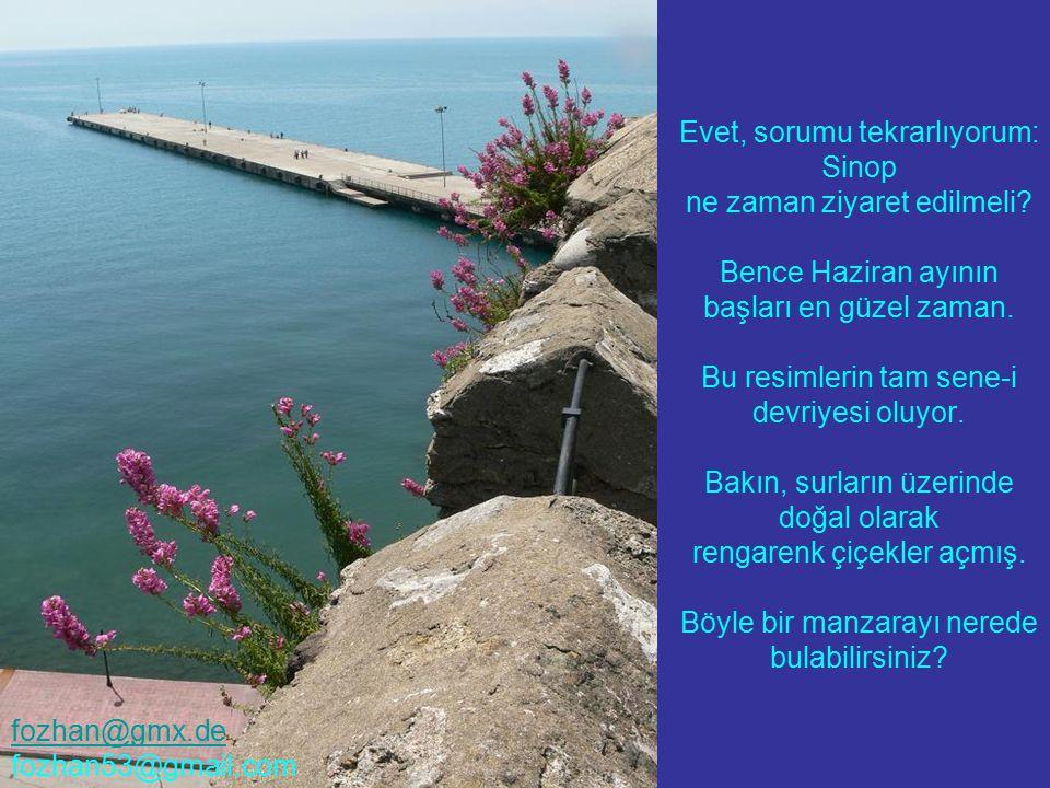Evet, sorumu tekrarlıyorum: Sinop ne zaman ziyaret edilmeli? Bence Haziran ayının başları en güzel zaman. Bu resimlerin tam sene-i devriyesi oluyor. B