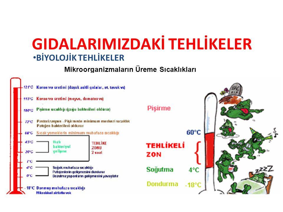GIDALARIMIZDAKİ TEHLİKELER BİYOLOJİK TEHLİKELER Mikroorganizmaların Üreme Sıcaklıkları